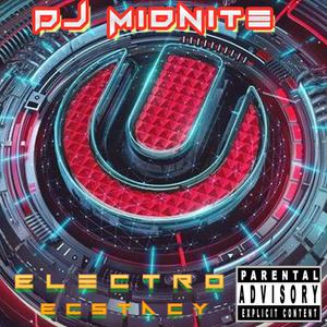 DJ Midnite-Electro Ecstacy