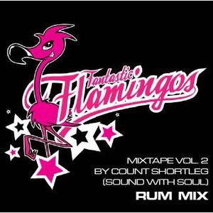 Fantastic Flamingos Masband 2010 PromoMix Vol.2