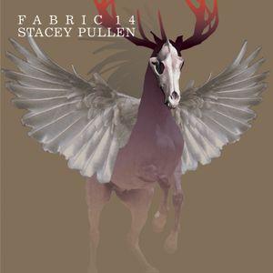 fabric 14: Stacey Pullen 30 Min Radio Mix