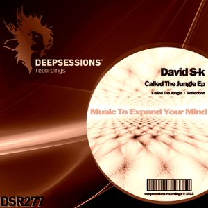 DSR277 David S-k - Called The Jungle Ep