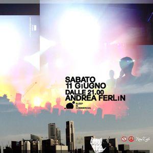 Andrea Ferlin_Ritual 11-06-011 pt.3