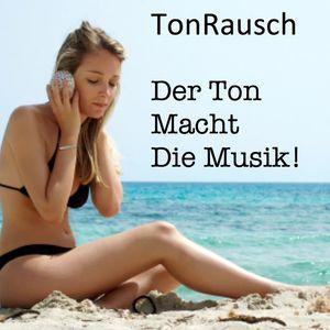 Der Ton Macht Die Musik 005 (May 2015) by TonRausch