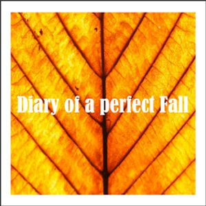 Diary of a perfect Fall