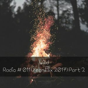 WILD | Radio # 011 (YEAR MIX 2017) PART 2