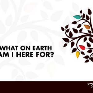 What On Earth Am I Here For - Called to Belong