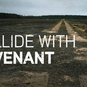 Collide with Covenant [Psalm 89]