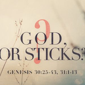 God, or Sticks?