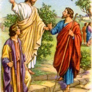 Palabra de vida - Domingo XVI: Ora et labora 22 de Julio de 2012