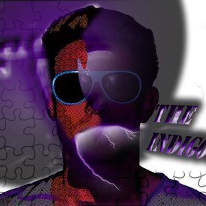 THE INDIGO ARTIST