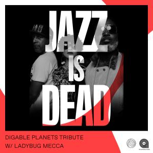 Artform Radio: Digable Planets Tribute with Ladybug Mecca // 14-02-20