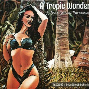 A Tropic Wonder - Deep Vibe Tropical Tribal House Mix