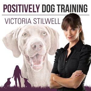 Positively Dog Training Episode 606