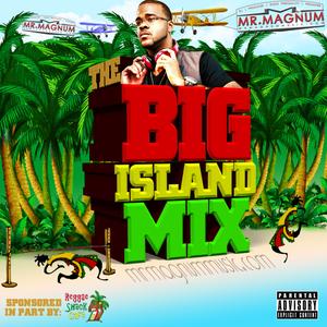 The Big Island Mix - The Bob Marley Tribute (S0107) (Sponsored by @ReggaeShackCafe)
