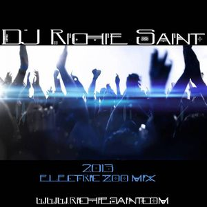 DJ Richie Saint 2013 Electric Zoo Electro/House Mix