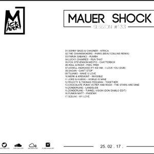 Mick Mauer - Mauer Shock Session 133