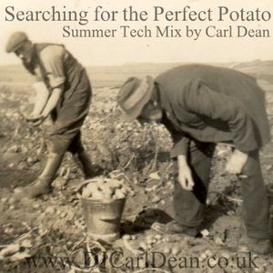 Searching for the Perfect Potato