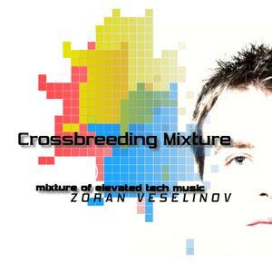 ZORAN VESELINOV-CROSSBREEDING(MIXTURE OF ELEVATED TECH MUSIC)