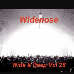 Wide & Deep Vol 28
