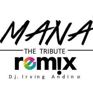 Mana THE TRIBUTE  remix