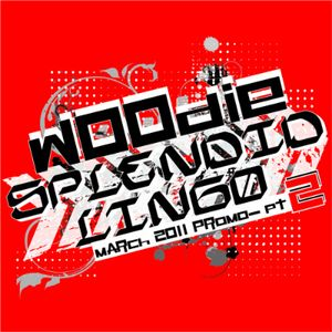 DJ Woodie - Splendid Lingo (March 2011 promo) - pt. 2