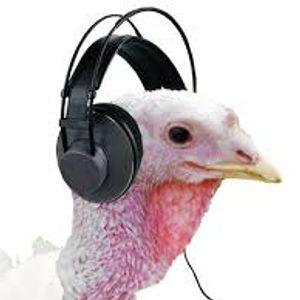 In Yer Ears #63 Spot The Turkey