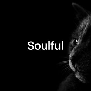 Soulful House Mix  12/13/2016