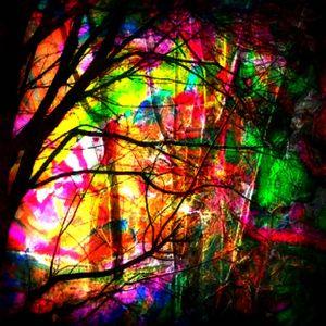 Rave In The Woods 05/06/13 Full Set (Full On Psytrance)