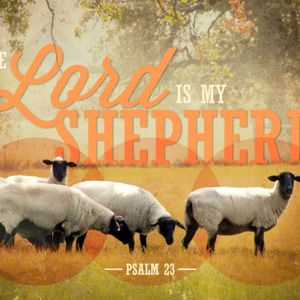 The LORD is My Shepherd - Psalm 23 (Part 2)