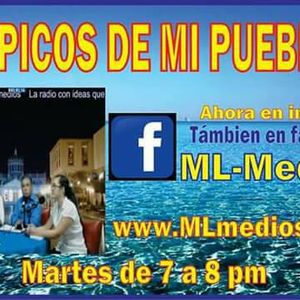TÓPICOS DE MI PUEBLO  9MAY17  PROYECTO DE NACIÓN DE MORENA