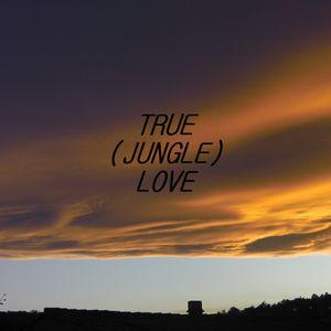 TSHANG - TRUE (JUNGLE) LOVE