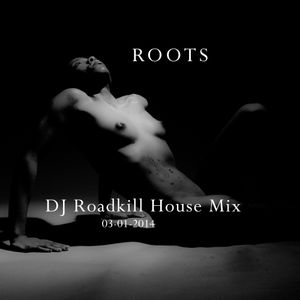 """ROOTS"" DJ Roadkill House Mix 03-01-14"
