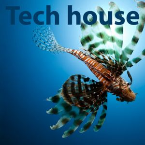 Strobi-wan Kenobi in2 Tech House - 23.10.2011