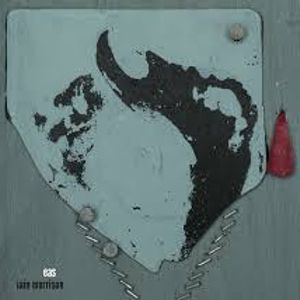 Roots & Fusion no.331, 24/6/15, Stark to Hayvanlar Alemi via Iain Morrison & Project Jam Sandwich