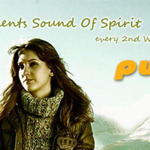 Eruvie - Sound Of Spirit Vol. 8