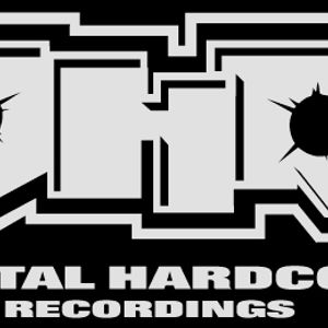 this is digital hardcore!!!