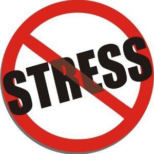 DJ Sam - No Stress Mix