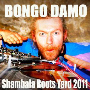 Roots Yard 2011 - Bongo Damo