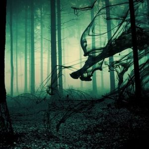 7Hours techno prog forest set