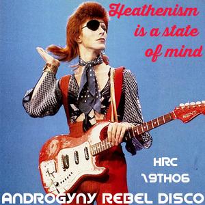 Androgyny Rebel Disco