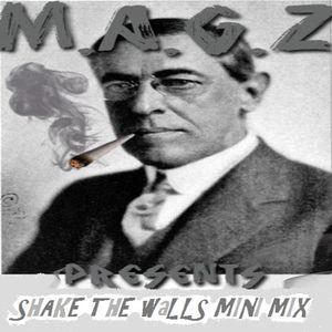 Shake the Walls Mini Mix