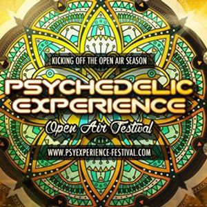 Psychedelic Experience 2015 Psy Chill