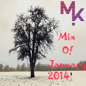 Mix Of January 2014 (mixed by MARV!N K!M) + Download