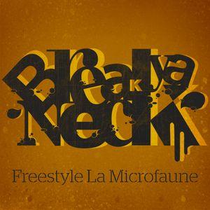 BYN Show (13 Jan. 2012) Part 03 / Freestyle La Microfaune