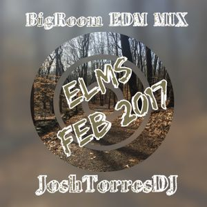 ELMS Feb2017 BigRoom JoshTorresDJ