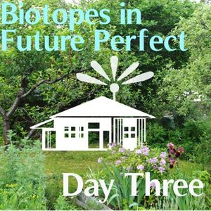 DR17 ::: Diskussion am Mittag ::: KAT AUSTEN ::: Biotopes in Future Perfect ::: 20170827