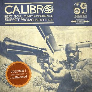 Calibro69 presents Snippet Promo Bootleg - Vol.1