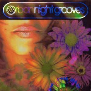 Urban Night Grooves Part 2 (2002) (Deep / Tech House)