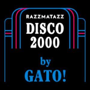 Disco 2000 by Gato!