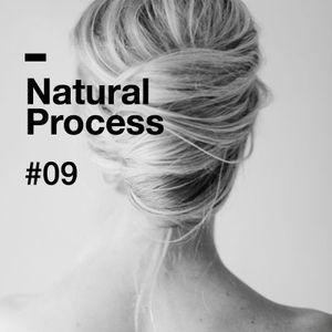 Natural Process #09