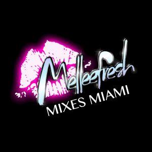 Melleefresh Mixes Miami (Miami 2019 DJ Mix)